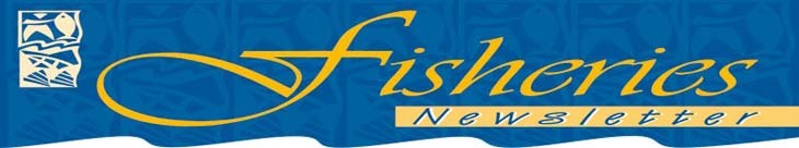 fishnews_banner_top